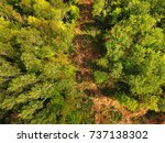 aerial view of path across... | Shutterstock . vector #737138302