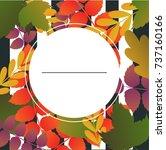 template design discount banner ... | Shutterstock .eps vector #737160166