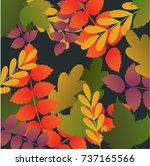 Beautiful Autumn Leafs And...
