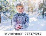 winter fairy tale. beautiful... | Shutterstock . vector #737174062
