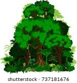 rainforest vector illustration. ...   Shutterstock .eps vector #737181676