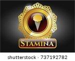 golden emblem or badge with... | Shutterstock .eps vector #737192782