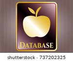 shiny badge with apple icon...   Shutterstock .eps vector #737202325
