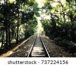 Train Line Inside The Forest O...