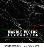 black vector marble background  ... | Shutterstock .eps vector #737229196