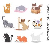 Stock vector funny cartoon cats characters different breeds illustration kitty young pet 737249608