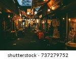 okinawa  japan   june 13  2016  ...   Shutterstock . vector #737279752
