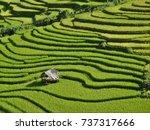 beautiful landscape of terraced ...   Shutterstock . vector #737317666