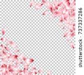 corner borders of flying petals ... | Shutterstock .eps vector #737337286