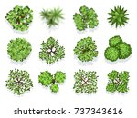 top view tree collection  ... | Shutterstock .eps vector #737343616
