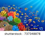 fish swim in the underwater and ... | Shutterstock .eps vector #737348878