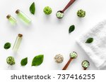 home made spa cosmetic with tea ... | Shutterstock . vector #737416255