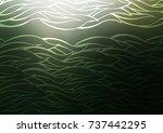 light green vector doodle... | Shutterstock .eps vector #737442295