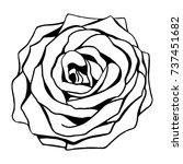 rose flower outline vector ... | Shutterstock .eps vector #737451682