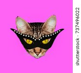 fun art collage masquerade cat... | Shutterstock . vector #737496022