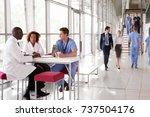 three healthcare workers...   Shutterstock . vector #737504176