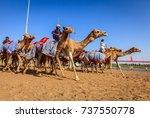 dubai  united arab emirates  ... | Shutterstock . vector #737550778