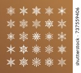 cute snowflakes collection... | Shutterstock .eps vector #737559406