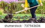 working farmer in the garden.... | Shutterstock . vector #737563636