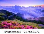 autumn scenery of hehuan... | Shutterstock . vector #737563672