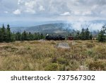 the old  locomotive in forest... | Shutterstock . vector #737567302