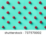colorful pattern of raspberries ... | Shutterstock . vector #737570002