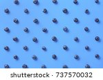 colorful pattern of blueberries ... | Shutterstock . vector #737570032