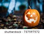 Halloween Jack O Lantern On...