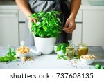 woman in style apron holding... | Shutterstock . vector #737608135