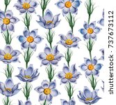 watercolor floral seamless... | Shutterstock . vector #737673112