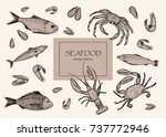 vector illustration. seafood ... | Shutterstock .eps vector #737772946