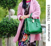 bag in female hands closeup.... | Shutterstock . vector #737809015