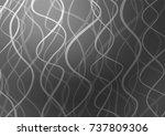 dark silver  gray vector doodle ... | Shutterstock .eps vector #737809306