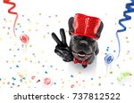 french bulldog dog celebrating... | Shutterstock . vector #737812522