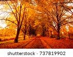 autumn landscape background.... | Shutterstock . vector #737819902