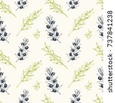 olives seamless pattern  hand... | Shutterstock .eps vector #737841238