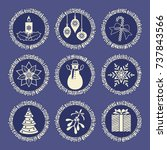 christmas elements into silver... | Shutterstock .eps vector #737843566