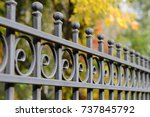 image of a beautiful decorative ... | Shutterstock . vector #737845792