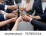 people clinking glasses at... | Shutterstock . vector #737851516
