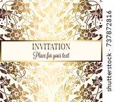 intricate baroque luxury... | Shutterstock .eps vector #737872816