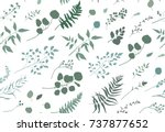 seamless pattern of eucalyptus... | Shutterstock .eps vector #737877652