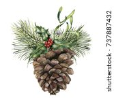 watercolor pine cone with... | Shutterstock . vector #737887432