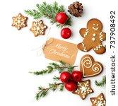 christmas gingerbread cookies... | Shutterstock . vector #737908492