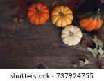 fall thanksgiving season still... | Shutterstock . vector #737924755
