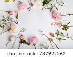 festive flower english rose... | Shutterstock . vector #737925562