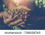 hands holding scoop of coffee... | Shutterstock . vector #738028765