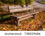 a bench in an autumn park. a... | Shutterstock . vector #738029686