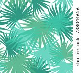 palm leaves seamless pattern.... | Shutterstock .eps vector #738044656