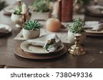 table served with succulents... | Shutterstock . vector #738049336
