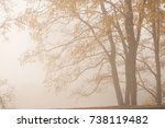 thick fog and colorful trees in ... | Shutterstock . vector #738119482